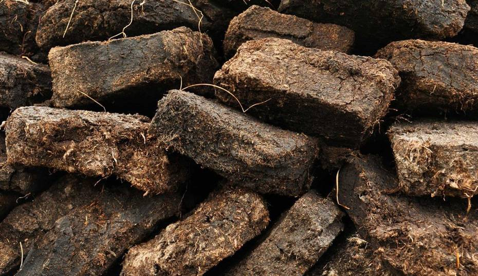Топливные брикеты - что это. использование топливных брикетов: плюсы и минусы, виды, технология производства, чем лучше обычных дров
