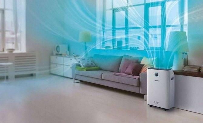 Зачем нужен увлажнитель воздуха? как выбрать увлажнитель воздуха? - афиша daily