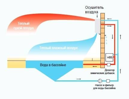 Организация вентиляции бассейна: лучшие методы организации воздухообмена. критерии выбора вентиляции для бассейна