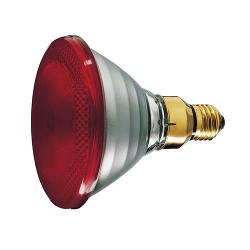 Инфракрасная лампа - принцип работы, области применения и виды приборов для обогрева