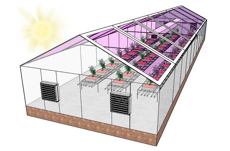 Отопление теплицы: обогрев, какое отопление лучше для промышленной теплицы