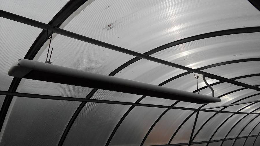 Инфракрасные обогреватели для теплиц: какой инфракрасный обогреватель выбрать, плюсы и минусы, отзывы » eтеплица