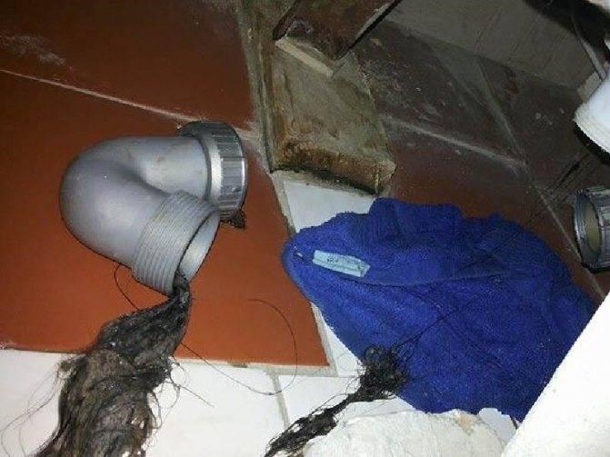 Почему появляется неприятный запах канализации в туалете и как этого избежать