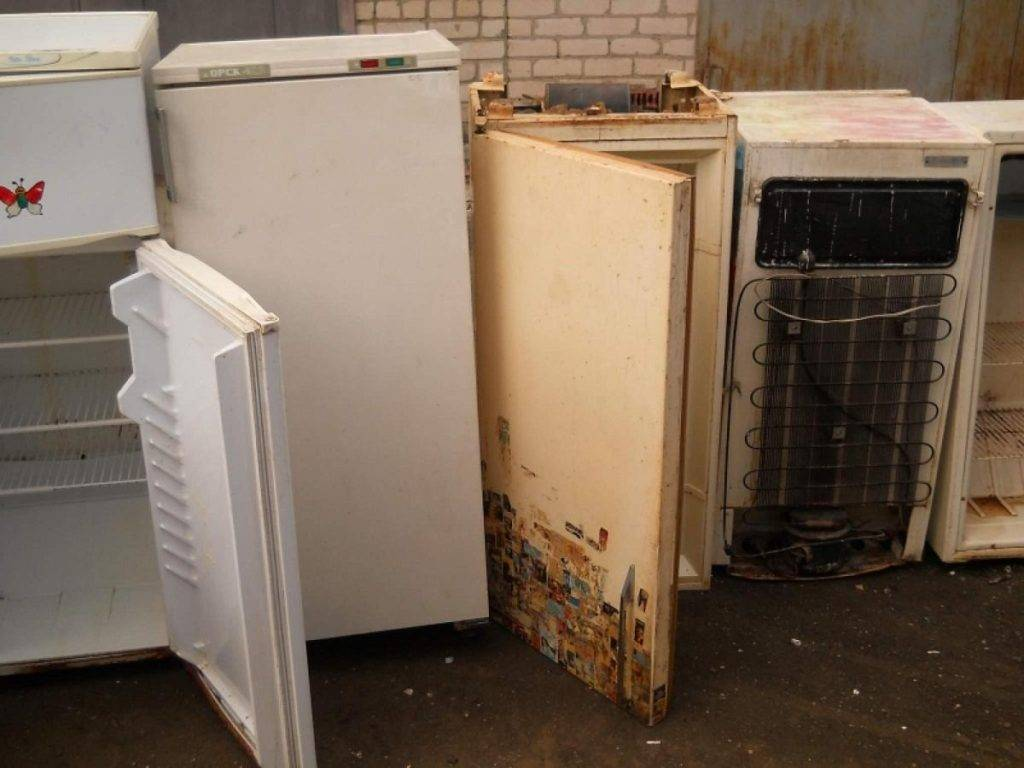 Куда сдать старый холодильник: бесплатно и за деньги, варианты