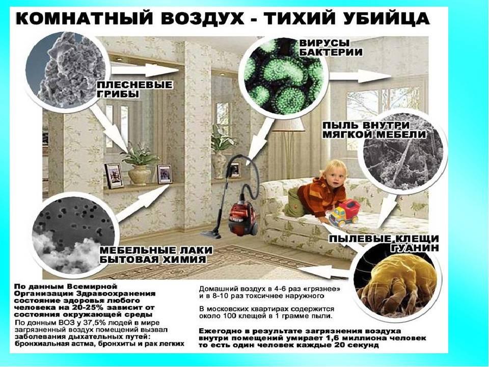 7 самых пыльных мест в доме, которые нужно убирать в первую очередь