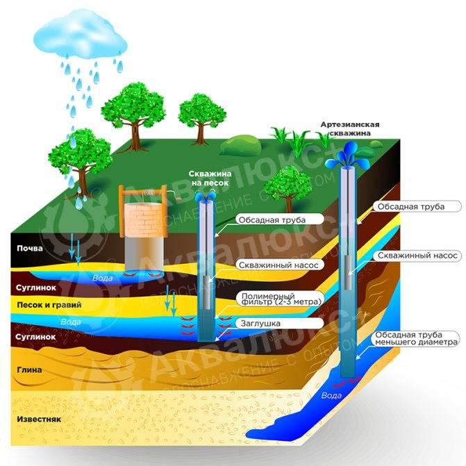 Как найти воду на загородном участке для скважины?