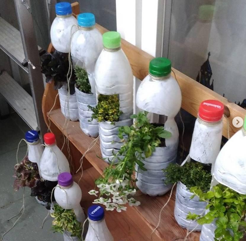 Пэтф-тара: как происходит производство пластиковых бутылок? процесс выдува, виды оборудования