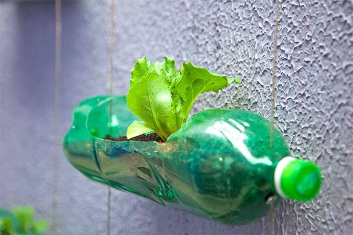 Проект «вторая жизнь пластиковой бутылки» в средней группе