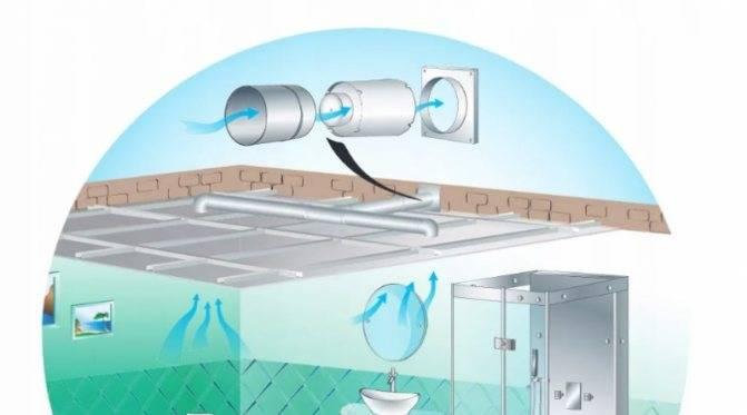 Вытяжка для ванной и туалета: виды, особенности, критерии выбора прибора и устройства