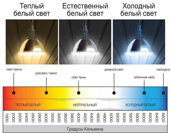 Cветодиодные лампы: теплый свет или холодный, чем отличаются