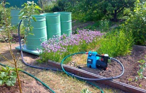 Насос для полива огорода: выбираем лучший вариант