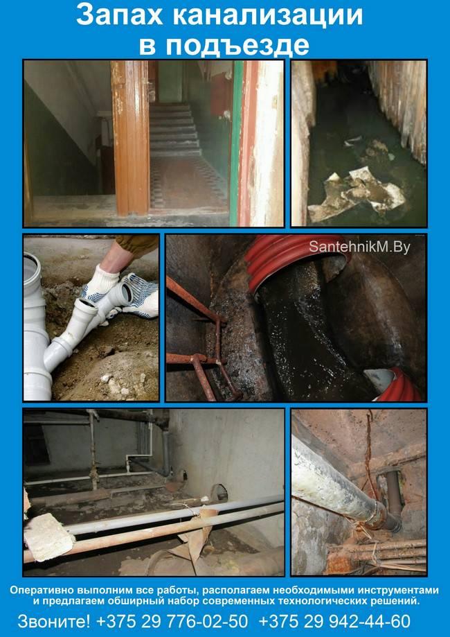 Запах из канализации в квартире: как устранить неприятный душок своими руками