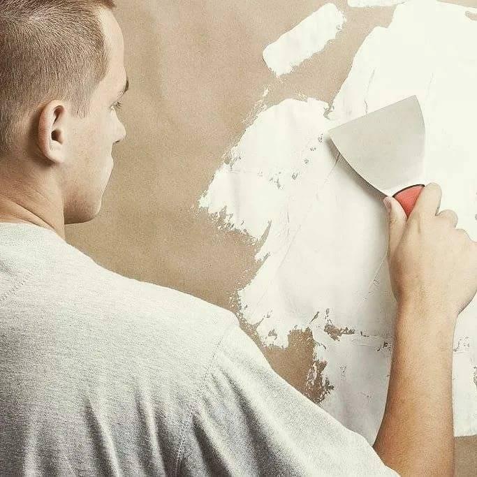Нужно ли грунтовать стены перед шпаклевкой: деревянные, бетонные