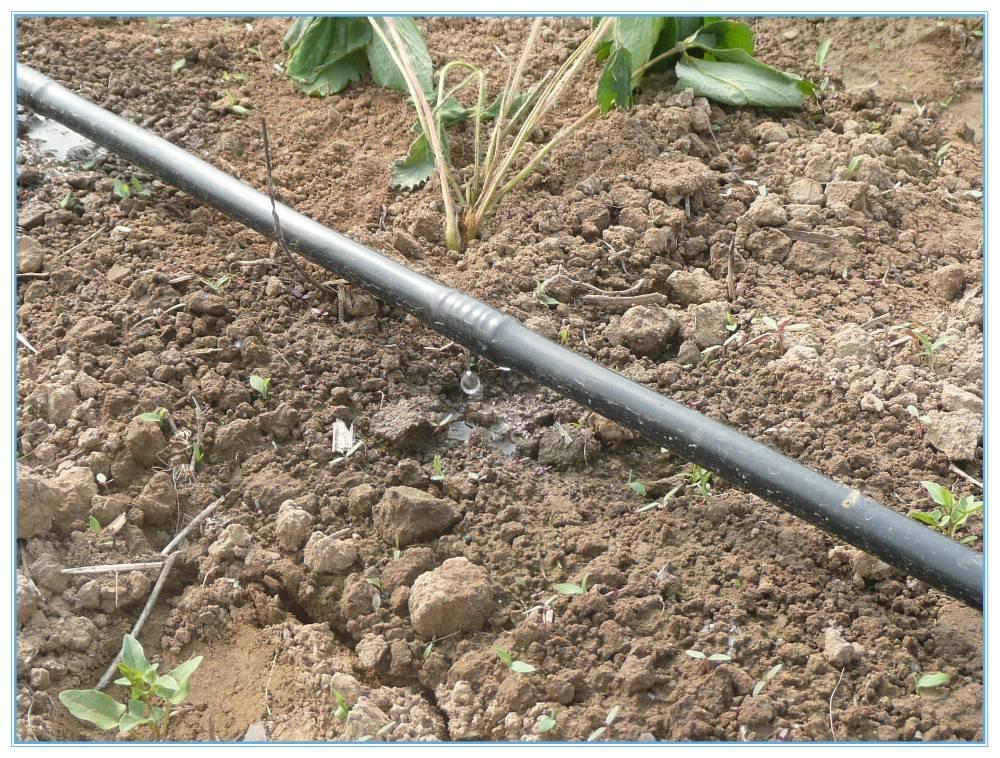 Система полива на даче из пластиковых труб: монтаж своими руками, видео